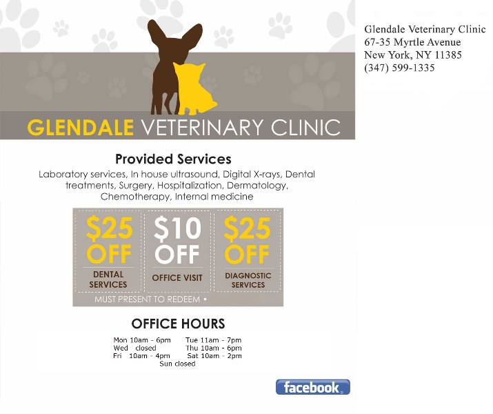 Coupon - Glendale Veterinary Clinic